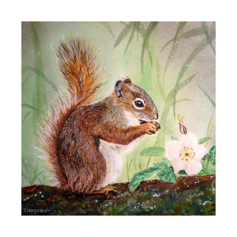 Dierenkaarten - Eekhoorn Knabbel - kunstkaart