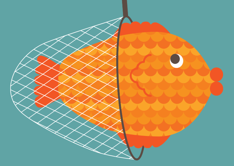 Dierenkaarten - vis in net