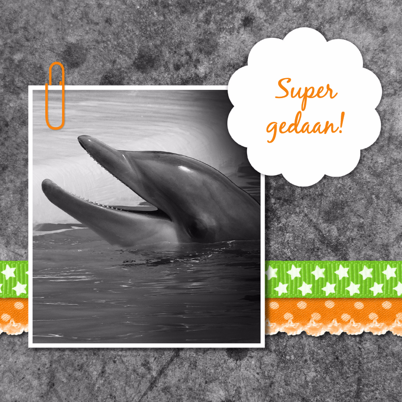 Felicitatiekaarten - Dolfijn met linten - DH