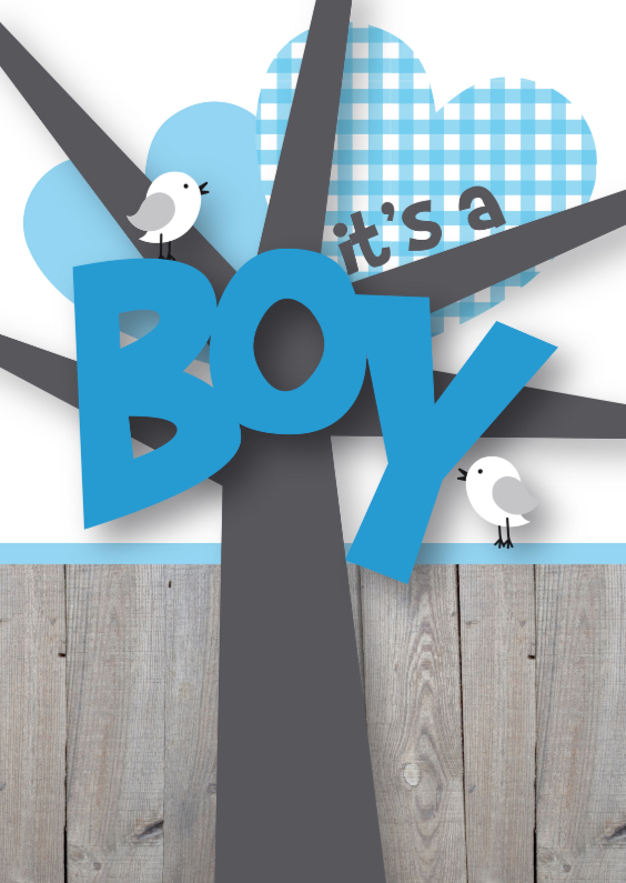 Felicitatiekaarten - Felicitatie boy happy birds