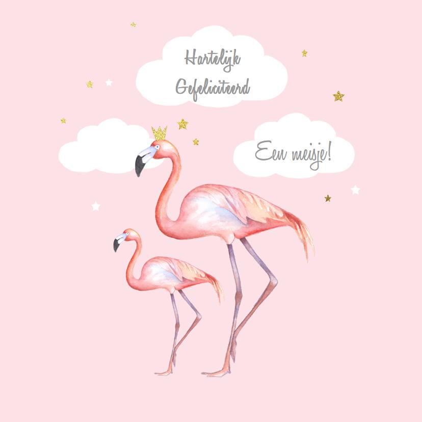 Felicitatiekaarten - Felicitatie flamingo geboorte