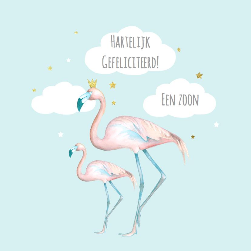 Felicitatiekaarten - Felicitatie flamingo jongen