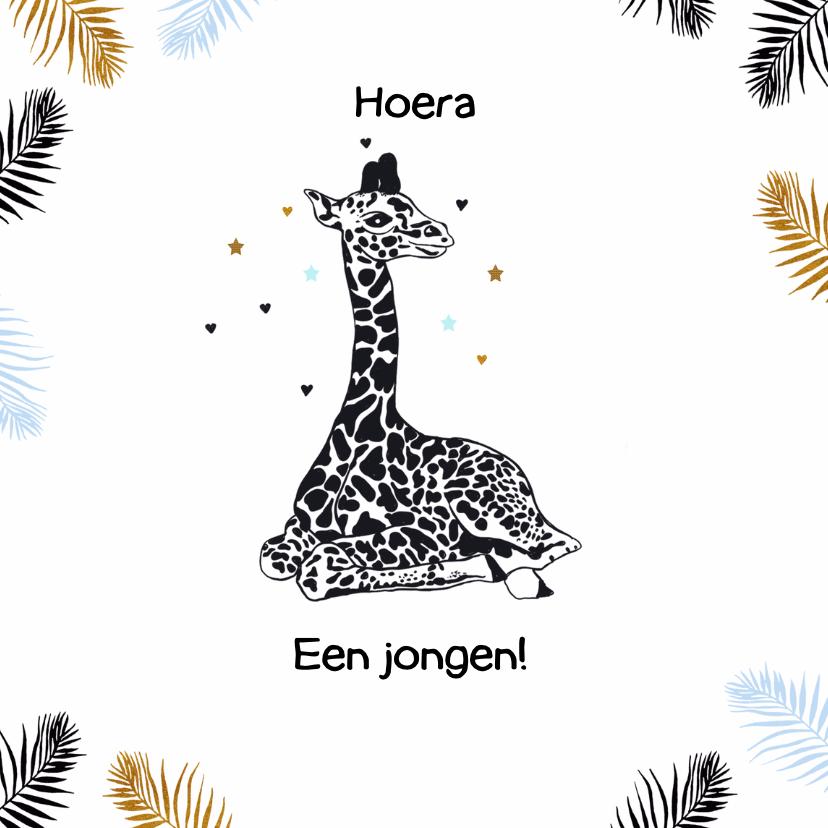 Felicitatiekaarten - Felicitatie geboorte giraffe jongen