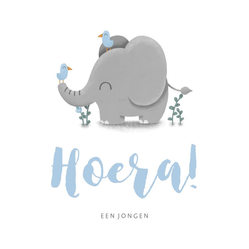 Felicitatiekaarten - Felicitatie geboorte jongen met lieve olifant en vogeltjes