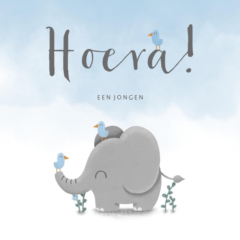 Felicitatiekaarten - Felicitatie geboorte met waterverf, vogeltjes en olifant