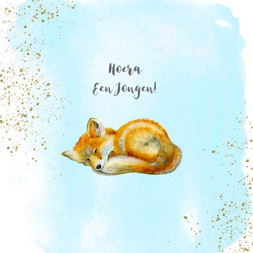 Felicitatiekaarten - Felicitatie geboorte vosje jongen