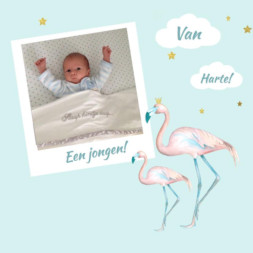 Felicitatiekaarten - Felicitatie jongen flamingo foto