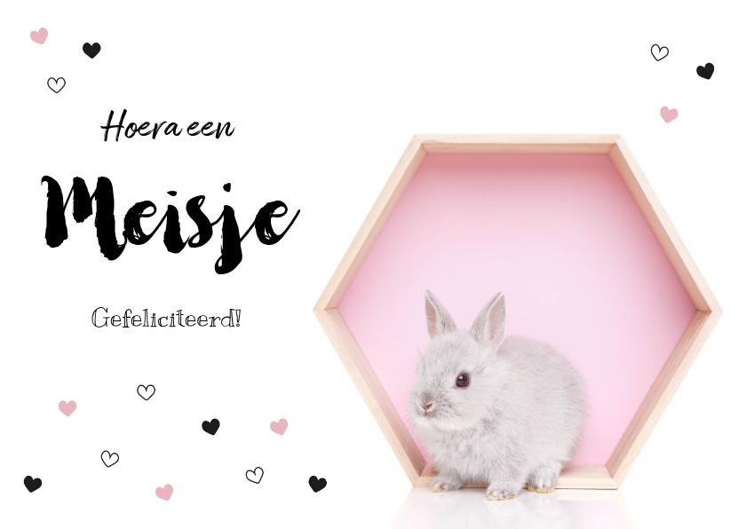 Felicitatiekaarten - Felicitatie kaart - Geboorte - Lief konijntje roze hartjes