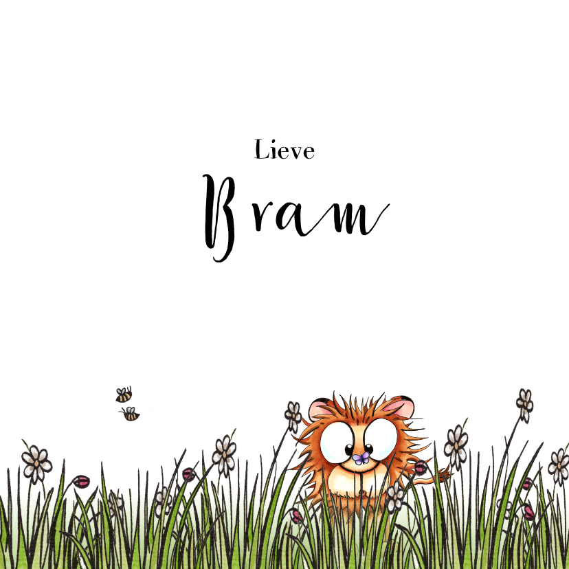 Felicitatiekaarten - Felicitatie kaartje geboorte leeuwtje