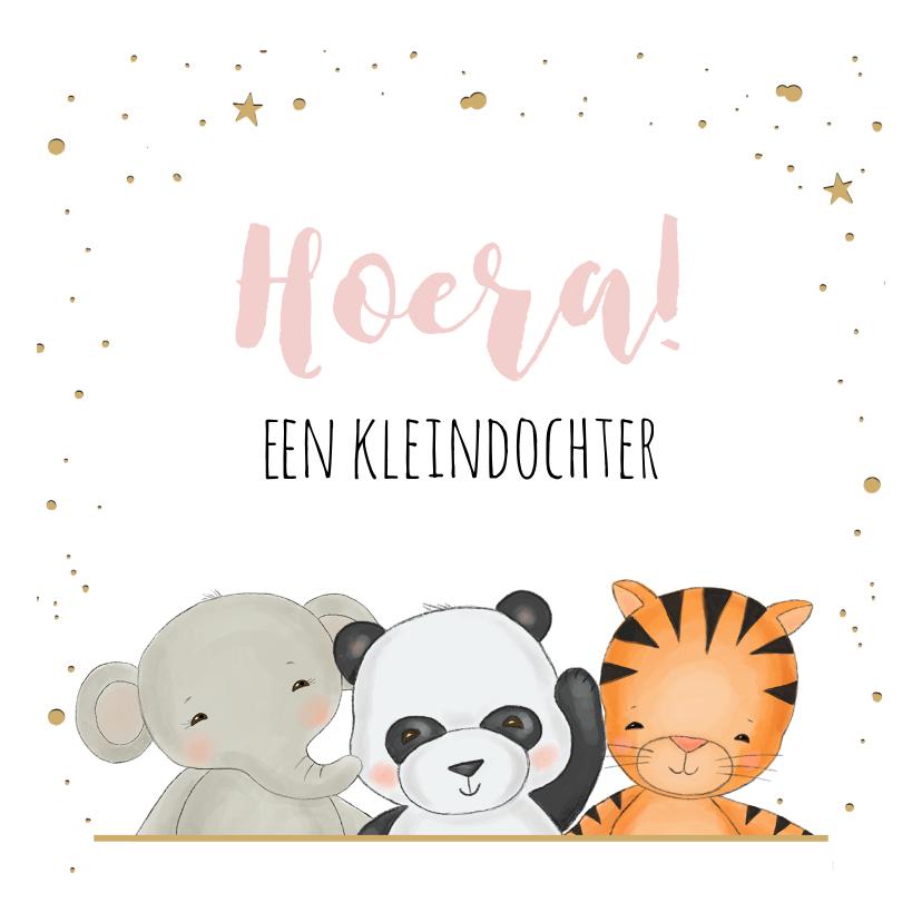Felicitatiekaarten - Felicitatie kleinkind - jungledieren met confetti