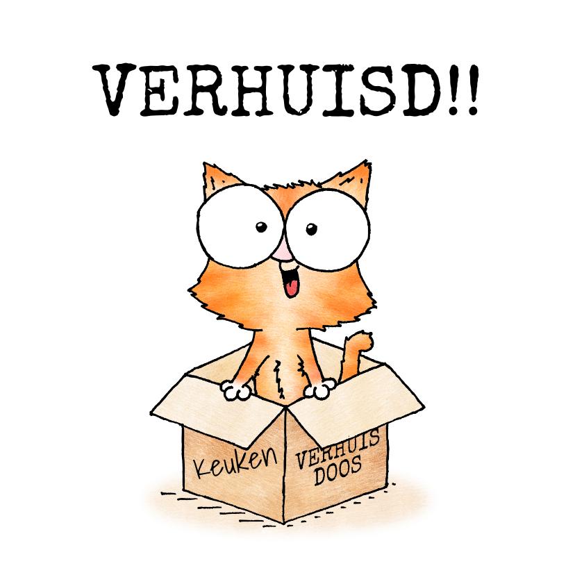 Felicitatiekaarten - Felicitatie nieuwe woning - kitten in verhuisdoos