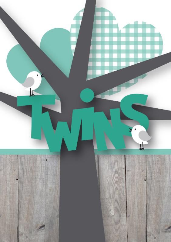 Felicitatiekaarten - Felicitatie tweeling birds