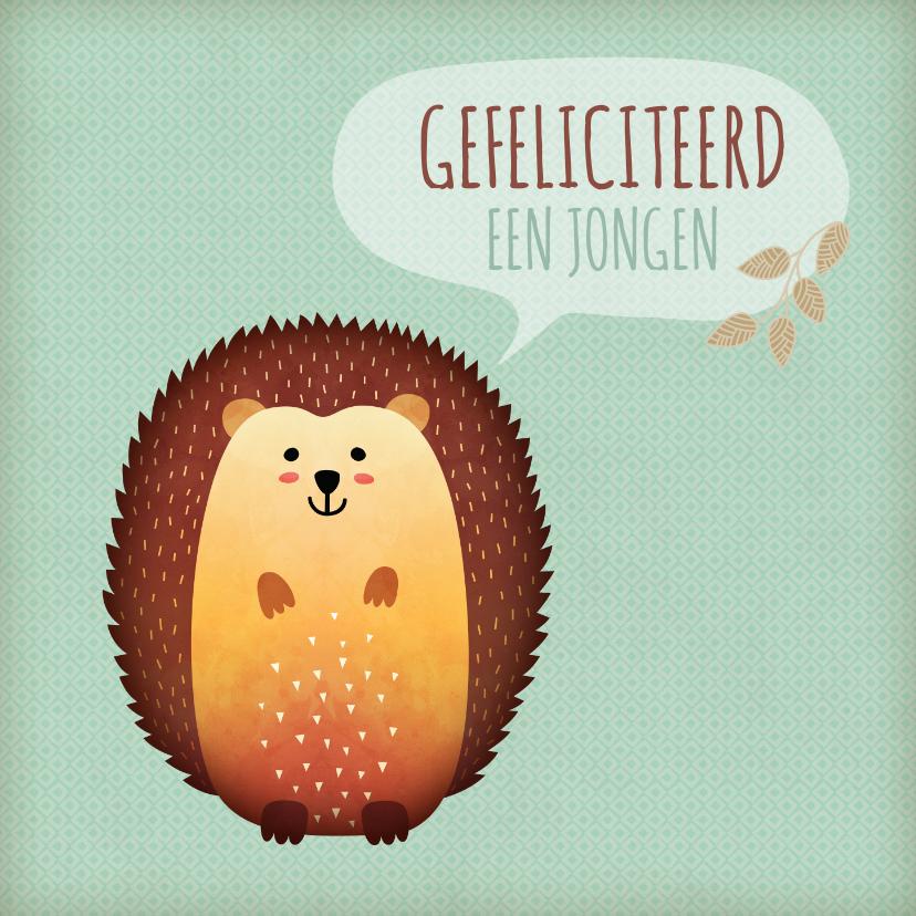 Felicitatiekaarten - Felicitatie voor geboorte met een leuke egel