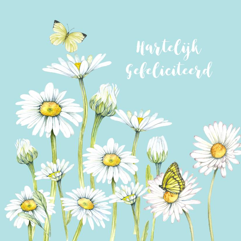 Felicitatiekaarten - Felicitatie voorjaarsmargrieten