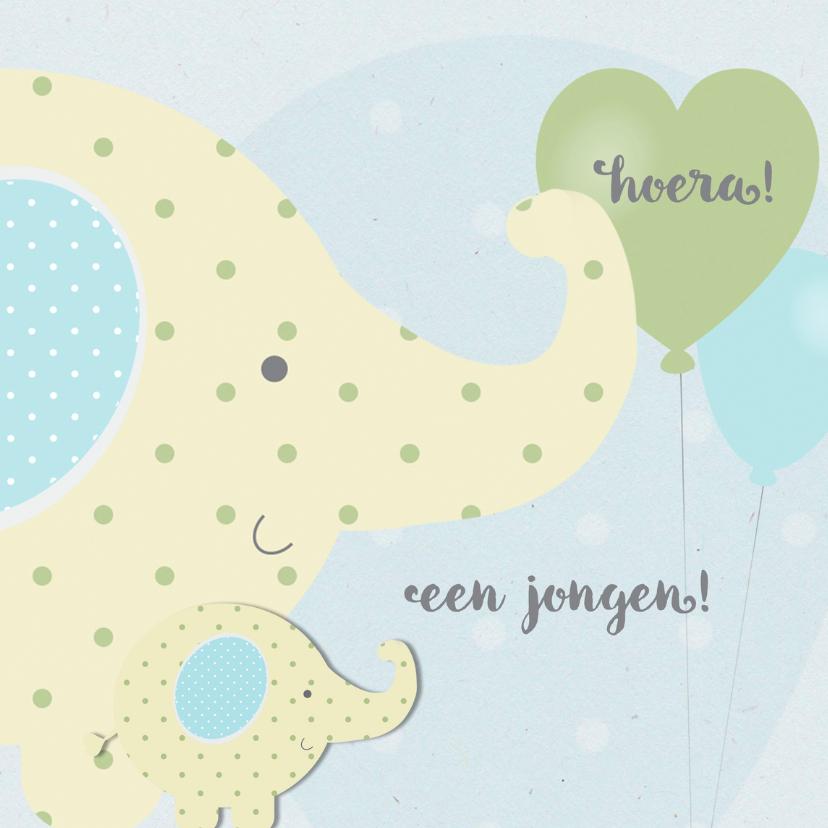 Felicitatiekaarten - Felicitatie zoon-olifantjes