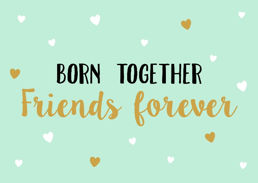 Felicitatiekaarten - Felicitatiekaart Friends Forever