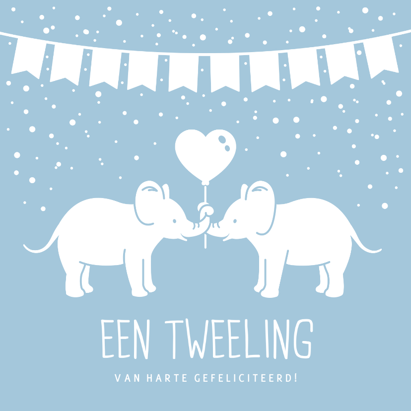 Felicitatiekaarten - Felicitatiekaart geboorte tweeling 2 jongens met olifantjes