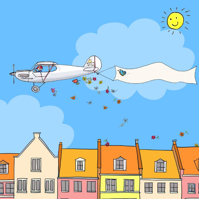 Felicitatiekaarten - Felicitatiekaart geboorte vliegtuigje