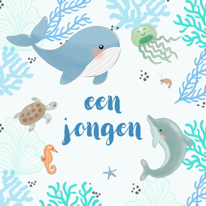 Felicitatiekaarten - Felicitatiekaart geboorte - Zeedieren met koraal in blauw