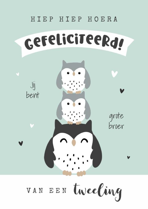 Felicitatiekaarten - Felicitatiekaart grote broer of zus van een tweeling