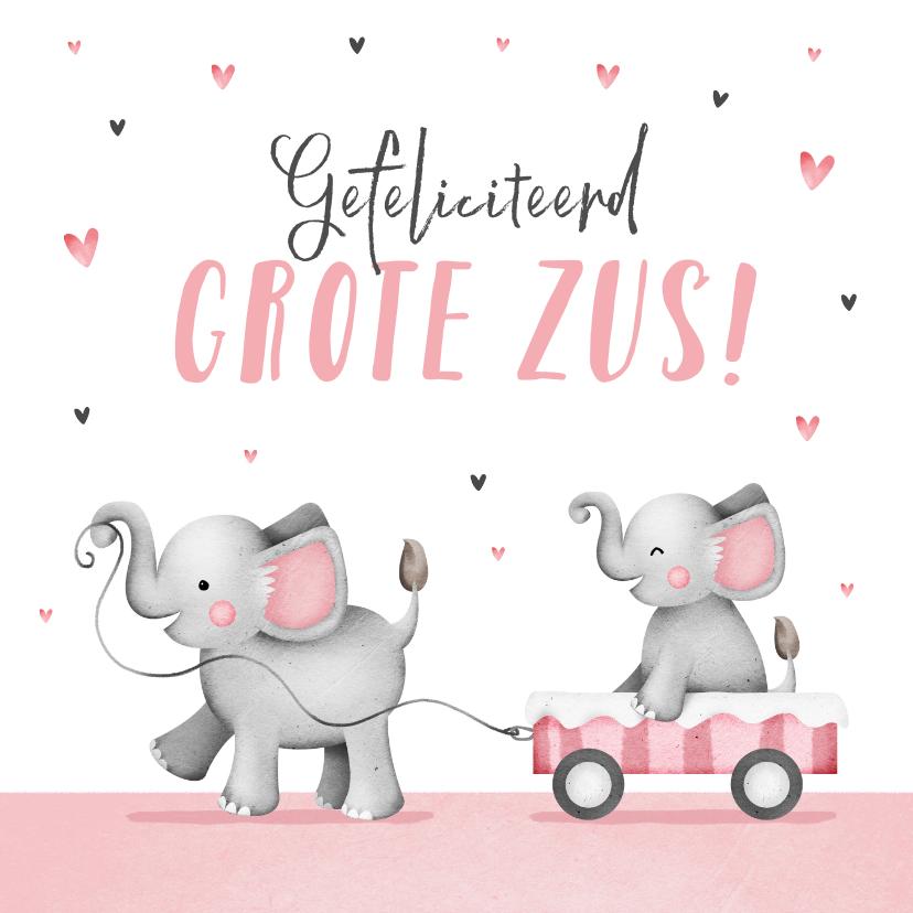 Felicitatiekaarten - Felicitatiekaart grote zus meisje geboorte olifantjes hartje