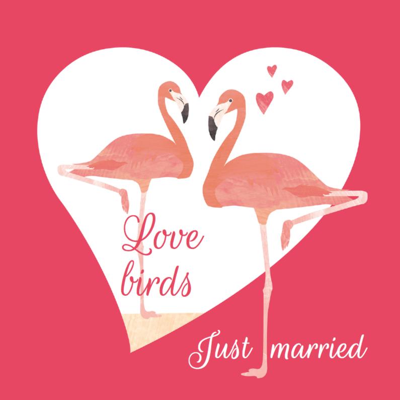 Felicitatiekaarten - Felicitatiekaart Love birds flamingo's