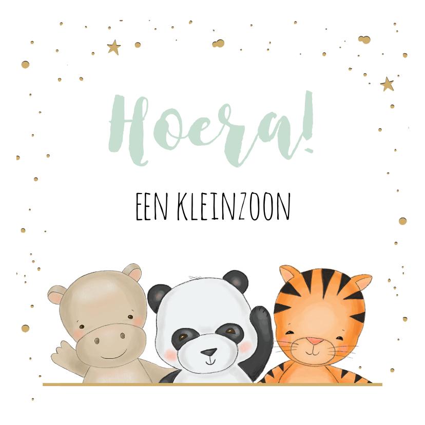 Felicitatiekaarten - Felicitatiekaart voor kleinzoon met drie safari diertjes