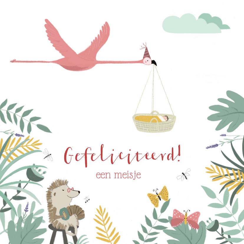 Felicitatiekaarten - Felicitatiekaartje meisje flamingo met baby
