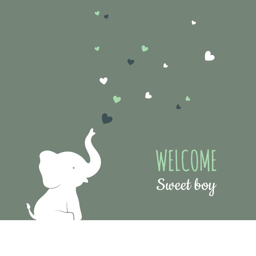 Felicitatiekaarten - Felicitatiekaartje olifantje met hartjes