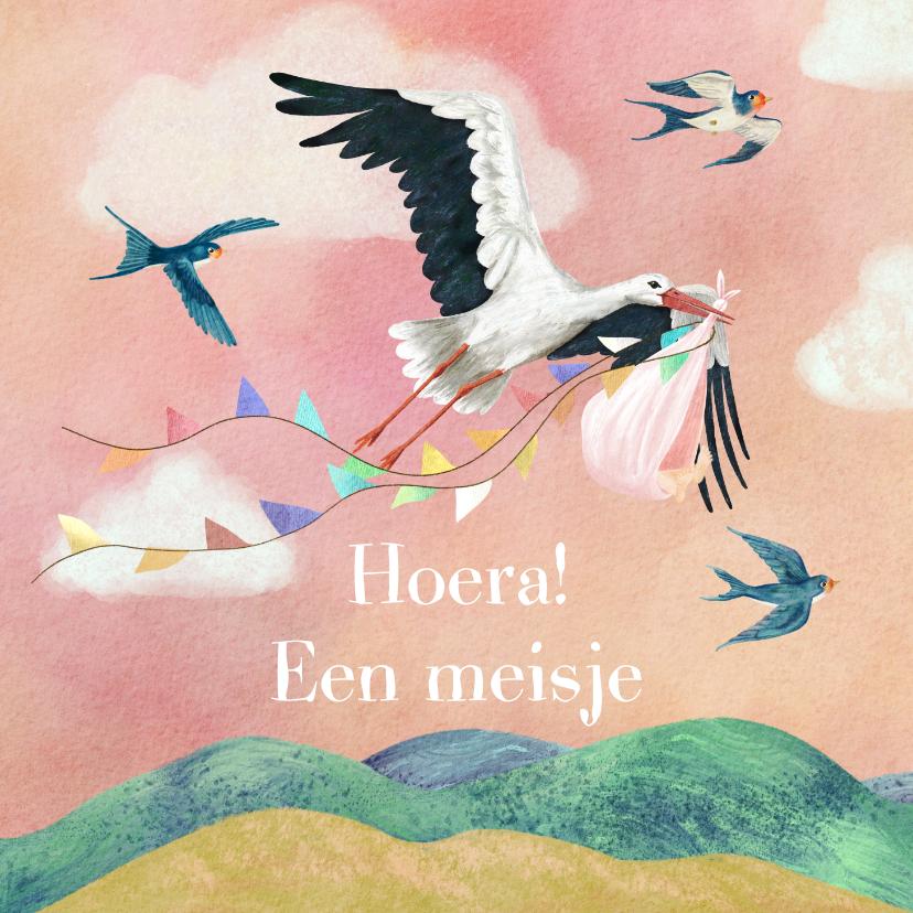 Felicitatiekaarten - Geboorte felicitatiekaart dochter met vliegende ooievaar