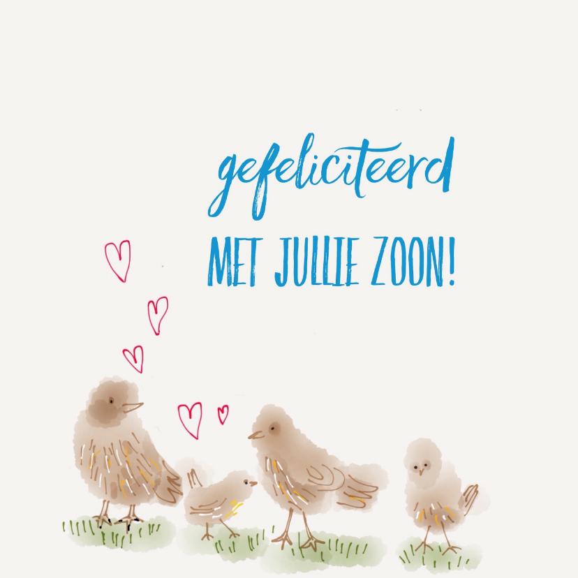 Felicitatiekaarten - Geboorte Jongen Vier Vogeltjes