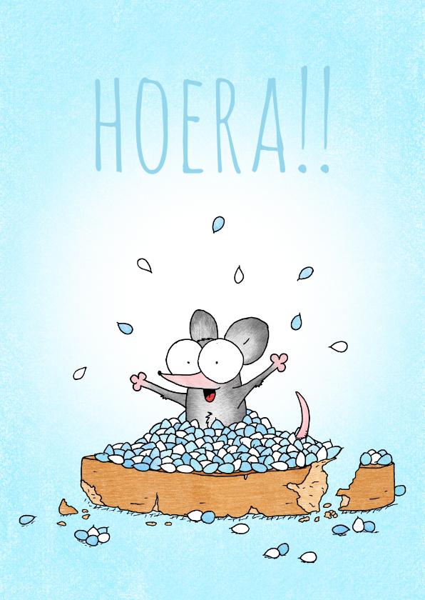 Felicitatiekaarten - Geboortefelicitatie jongen met beschuit met muisjes blauw