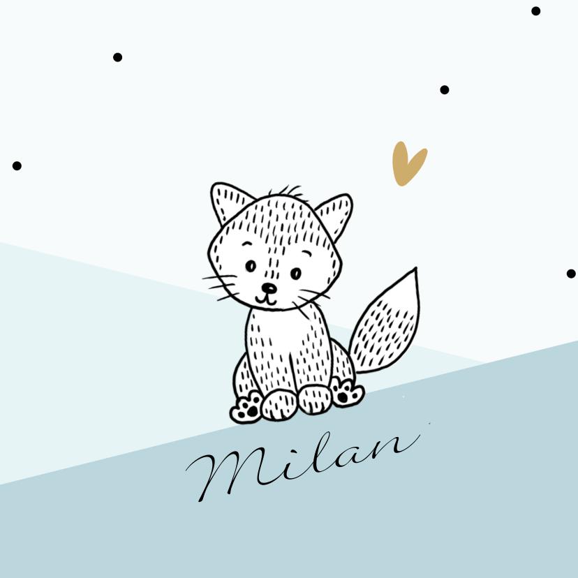 Felicitatiekaarten - Geboortekaartje voor jongen met een lief vosje in de bergen