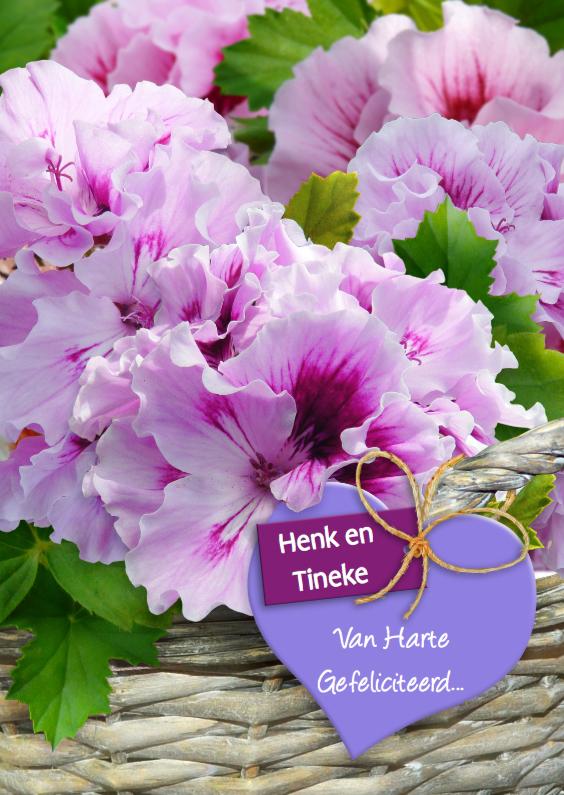 Felicitatiekaarten - Geraniums in mand met hart Felicitatie