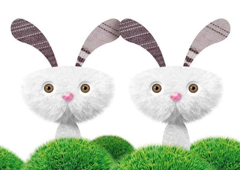 Felicitatiekaarten - Grappige tweeling kaart met konijntjes