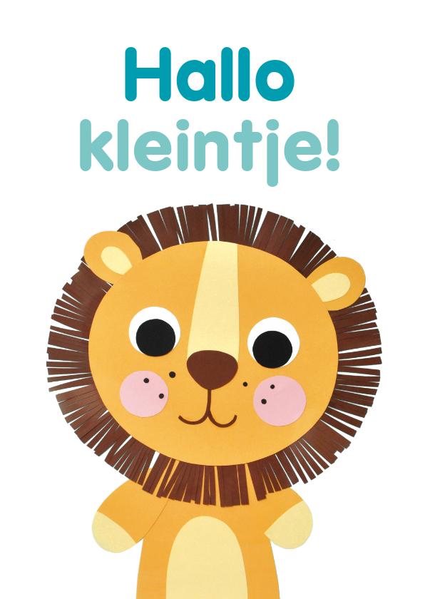 Felicitatiekaarten - Hallo kleintje leeuw jongen