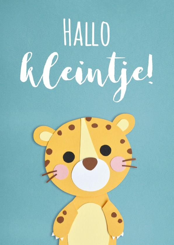 Felicitatiekaarten - Hallo kleintje luipaard