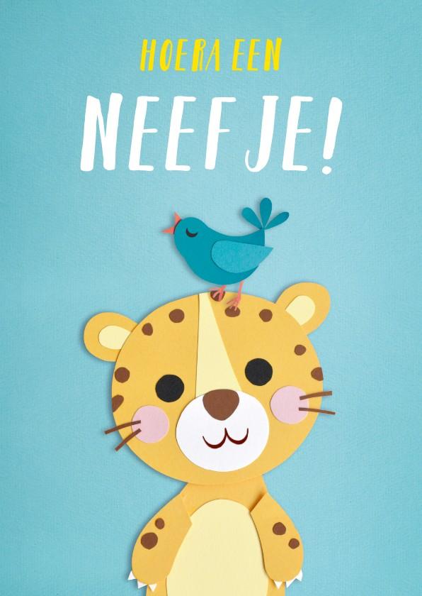 Felicitatiekaarten - Hoera een neefje! baby panter
