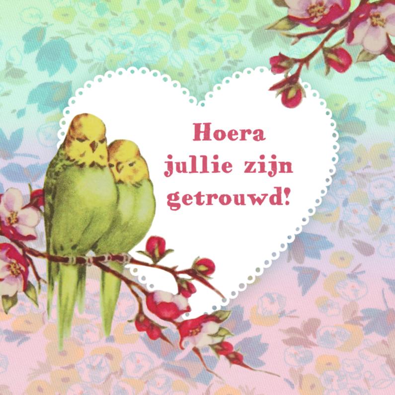 Felicitatiekaarten - huwelijks felicitatie parkieten
