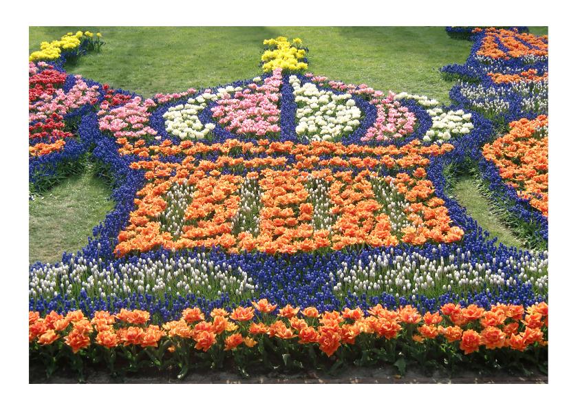Felicitatiekaarten - Jubileum Oranje Boven Kroon