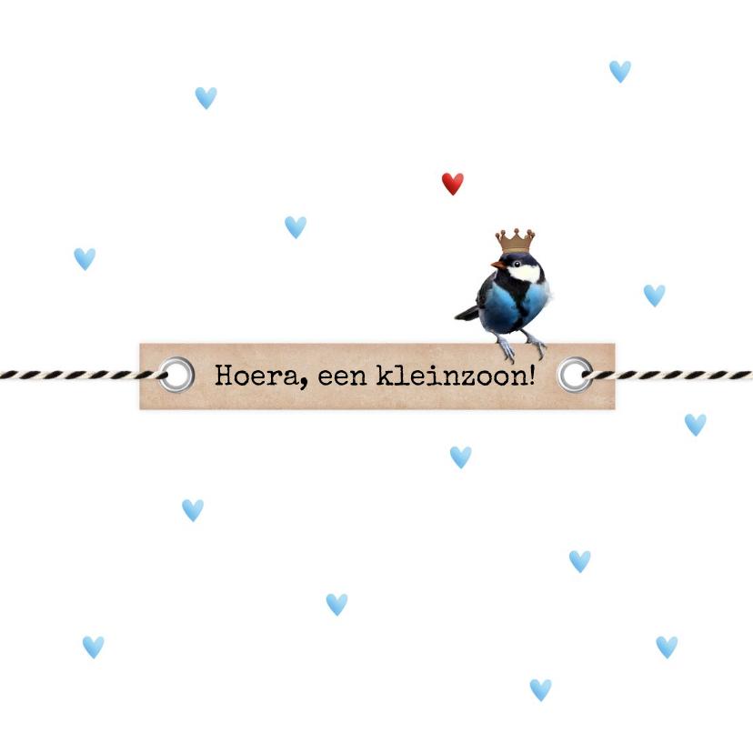 Felicitatiekaarten - Kleinzoon koolmeesje op label blauwe hartjes