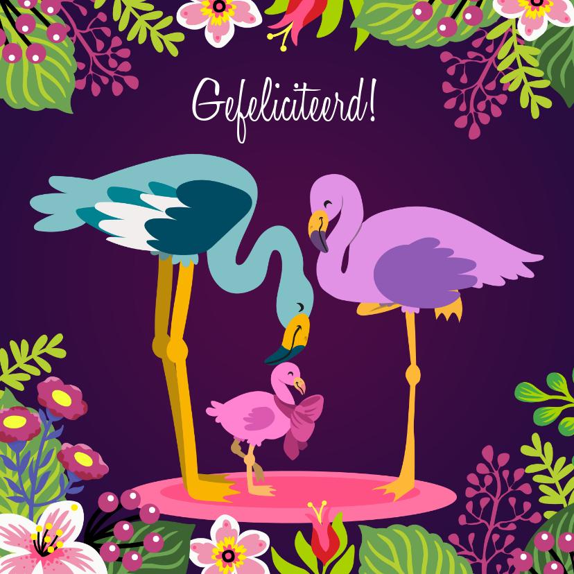 Felicitatiekaarten - Lief felicitatiekaartje met papa, mama en baby flamingo