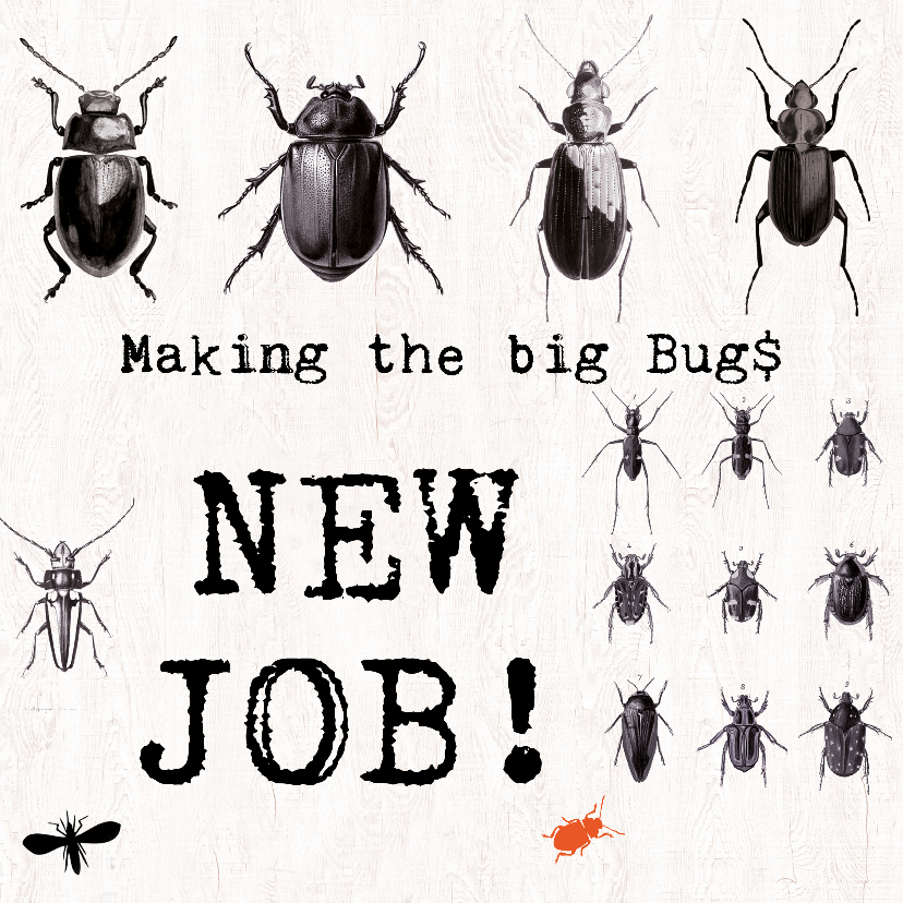 Felicitatiekaarten - Nieuwe baan - MAKING THE BIG BUGS!