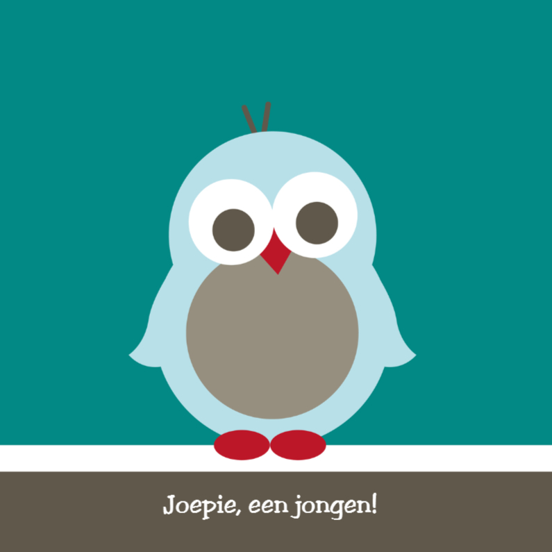 Felicitatiekaarten - Pinguïn jongen