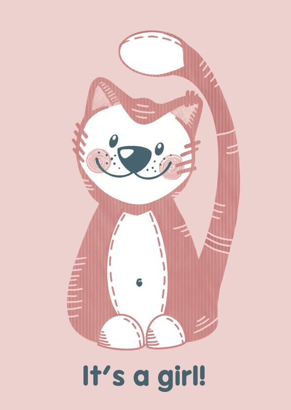 Felicitatiekaarten - Schattige felicitatiekaart geboorte meisje roze knuffelkat