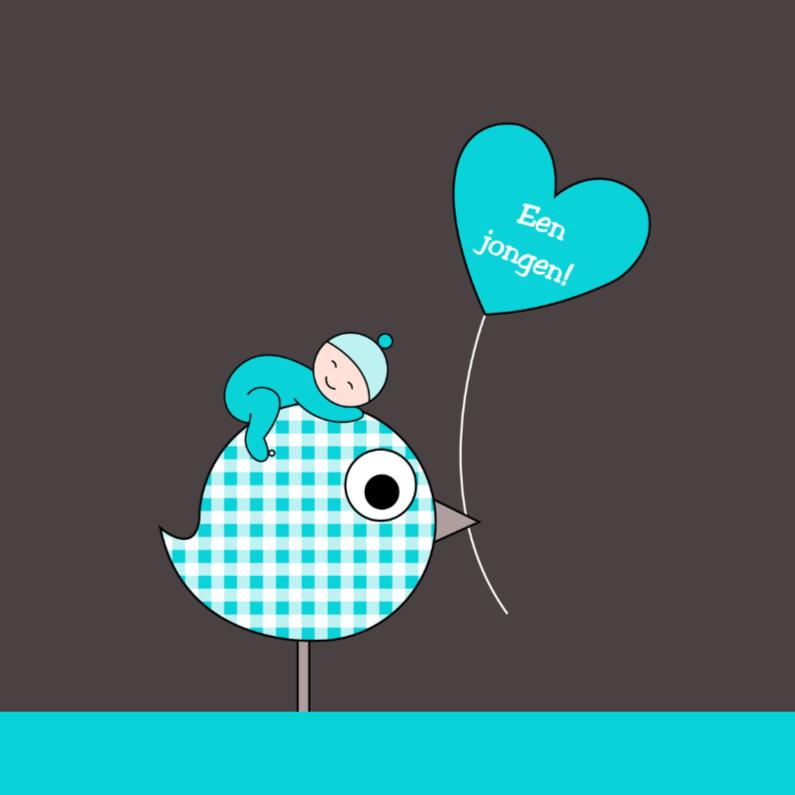 Felicitatiekaarten - Slapend jongetje op vogeltje