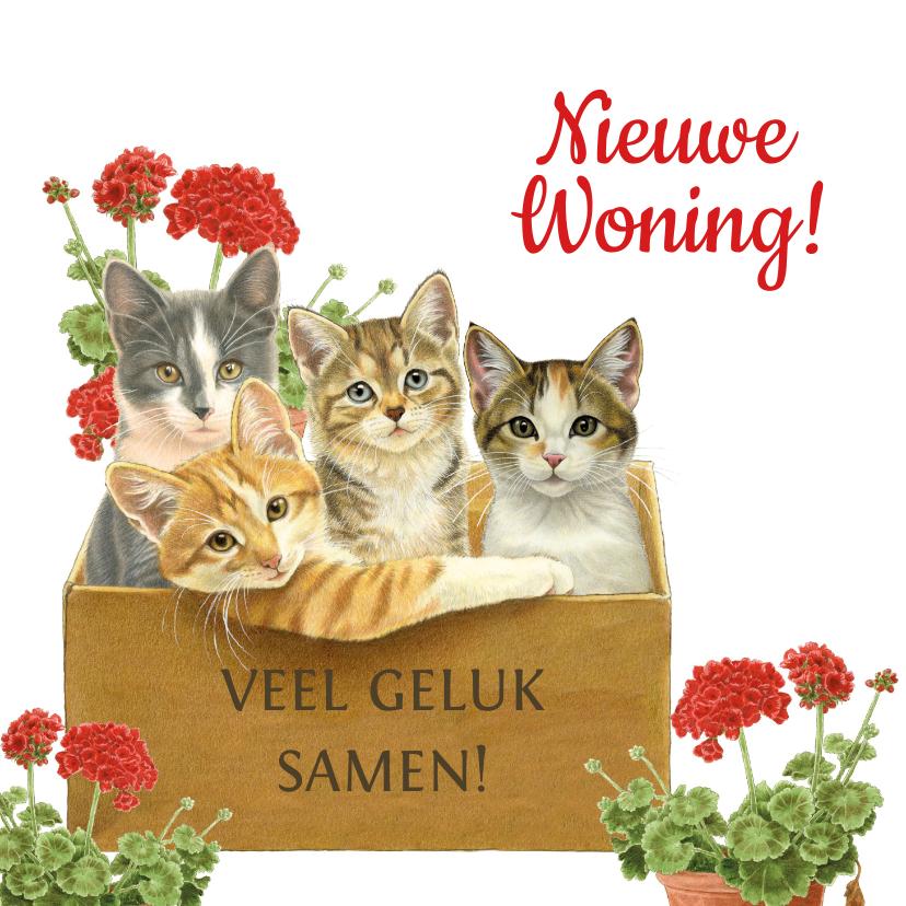 Felicitatiekaarten - Verhuiskaart met katten in verhuisdoos