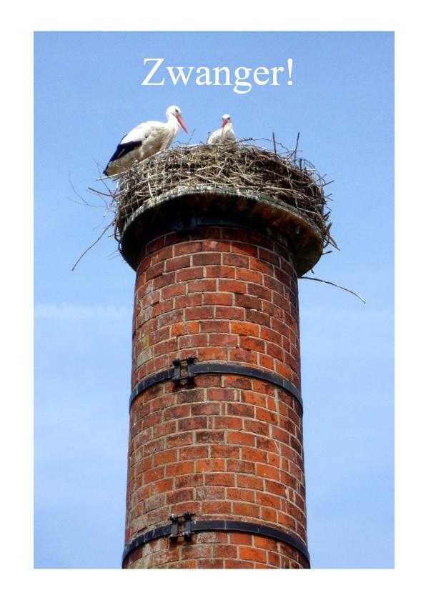 Felicitatiekaarten - Zwanger - ooievaars op nest