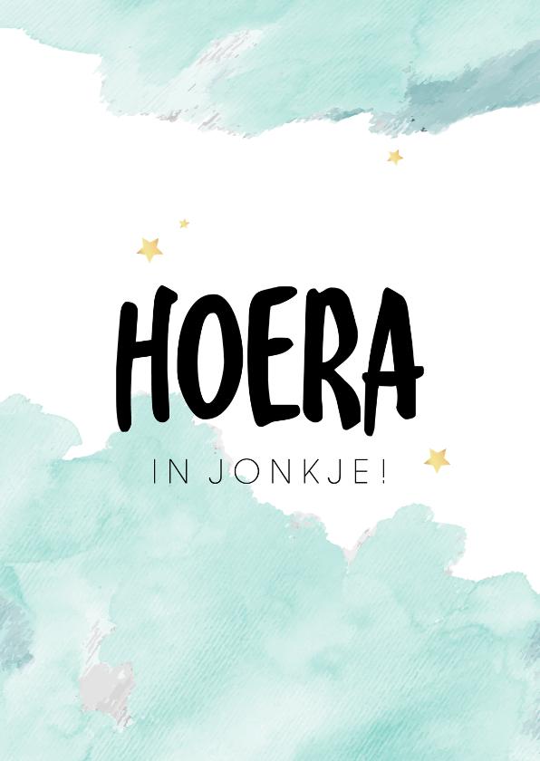 Fryske kaartsjes - Fryske felicitatiekaart geboorte zoon