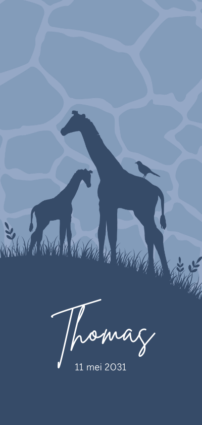 Geboortekaartjes - Geboorte - Giraffes met patroon